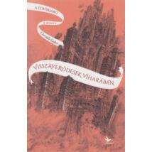 Visszaverődések viharában - A tükörjáró 4. könyv